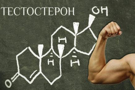Как повысить естественный уровень тестостерона у мужчин