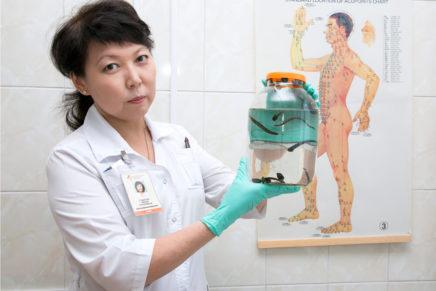 Гирудотерапия, лечение пиявками — отзывы, польза, противопоказания